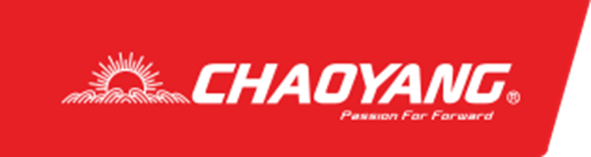 Picture for category Chaoyang Road Bike Tyres